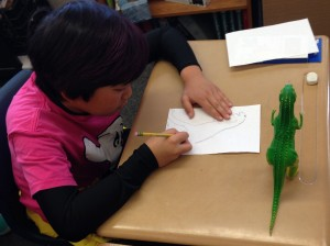 Observation drawing using a toy animal.